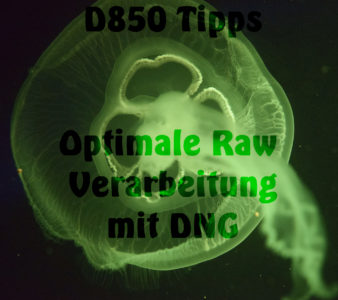 D850 – Tipps: Optimale RAW Verarbeitung mit DNG-Files