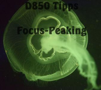 D850 – Tipps: Focus Peaking