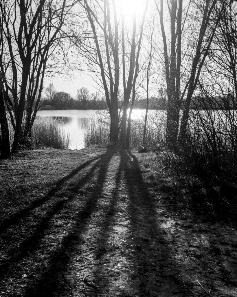 Beispiel für analoge Fotografie: Ufer mit der Linhof Technika