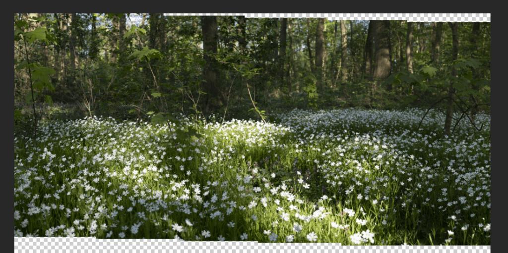 Ergebnis aus Photomerge bei der Erstellung von Panorama Fotos